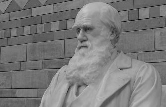 image shows a statue of Darwin for our blog post about the evolution of VoIP